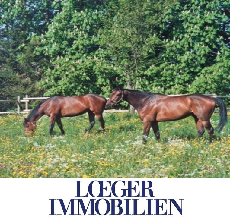 +VERKAUFT+ Bauernhof – Pferdehof in Dießen am Ammersee